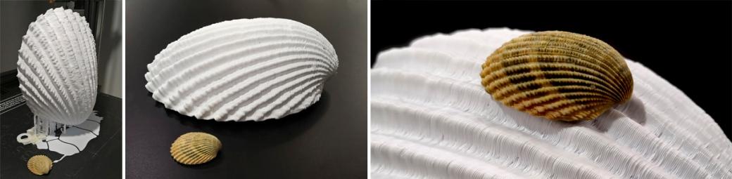 IMG_20190118_3D Print Shell